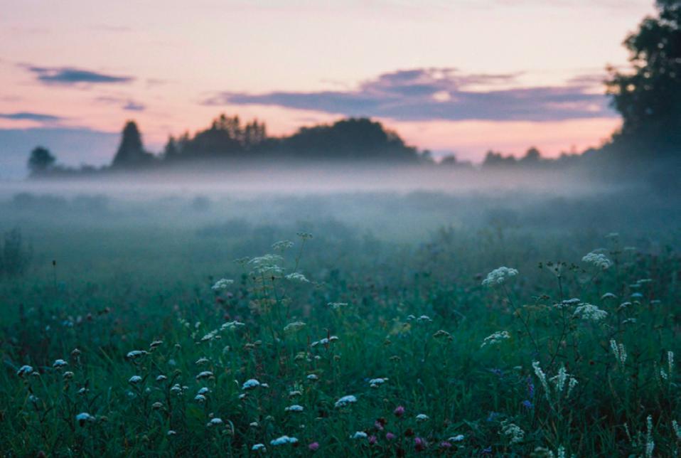 De Estonia para el mundo El genio creativo de Arvo Pärt